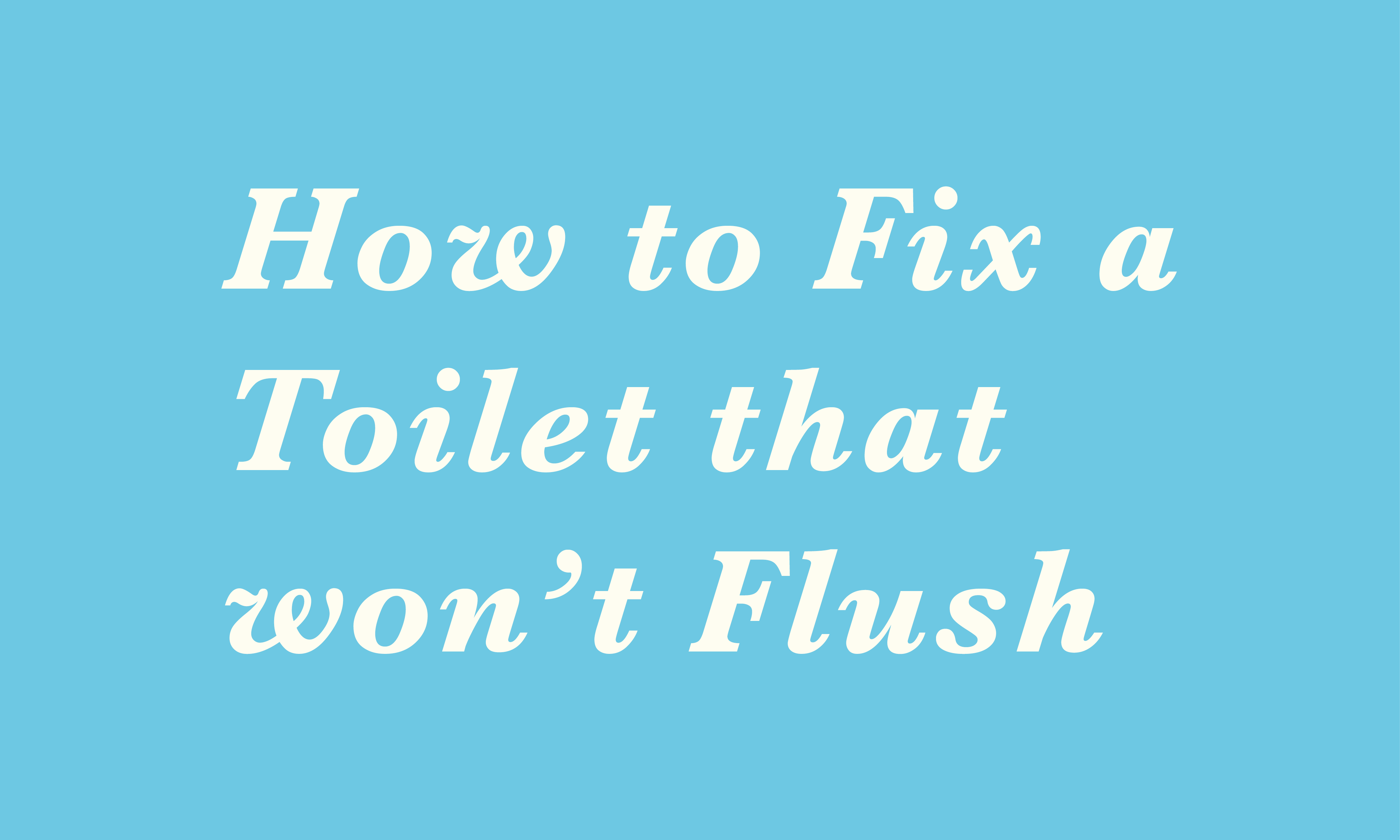 How to fix a toilet that won't flush