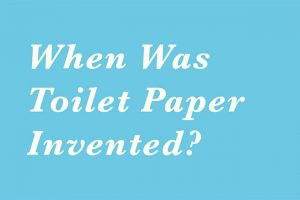 when-was-toilet-paper-invented